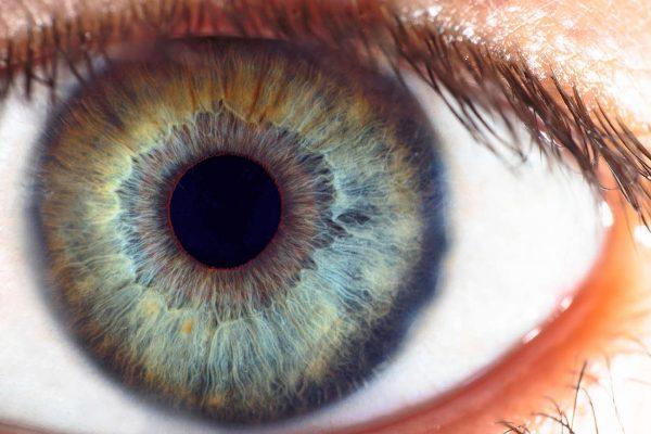 web-20210128-oogfoto-website-2