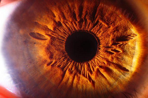 web-20210128-oogfoto-website-4416